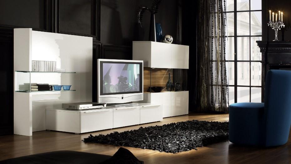 DVD Storage for Entertaiment Center