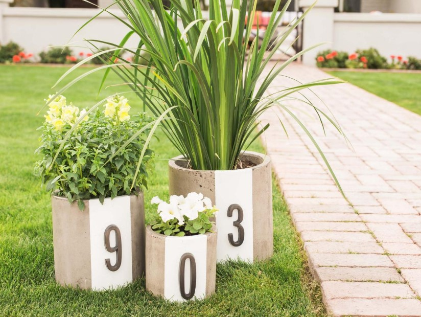 Cool Planters House Number