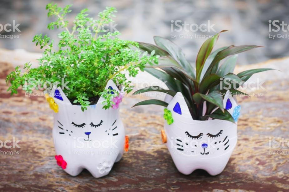 DIY Cute pot with soil