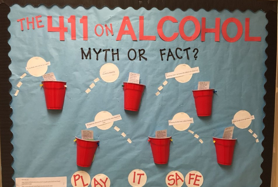 Alcohol Education Beer Pong-themed Board