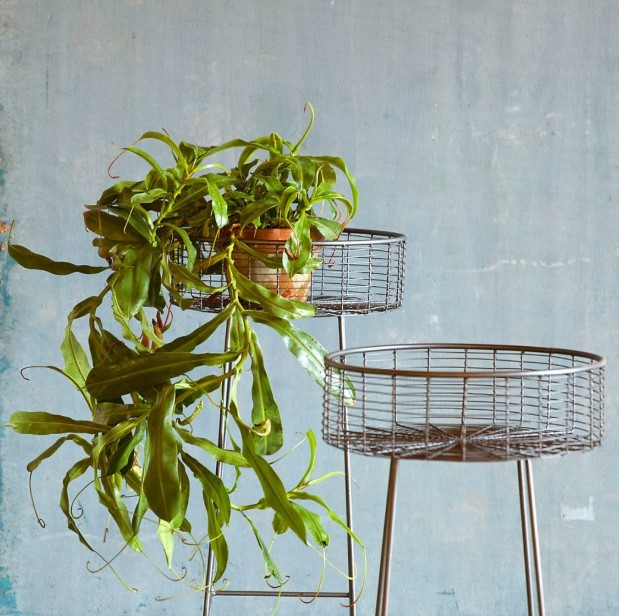 Plant Stand from the Basket