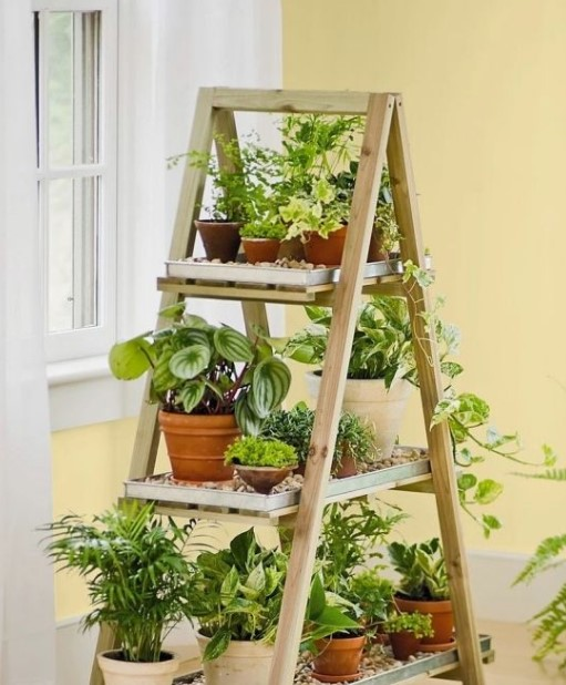 Plant Stand from the Unused Ladder