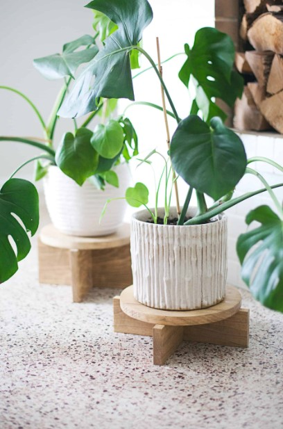 The Wooden Plant Stand